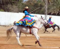 Escaramuza Riders at Todos Santos Horse Festival