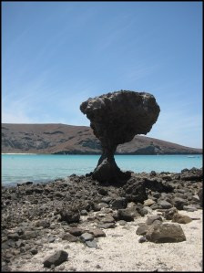 Mushroom Rock at Balandra Bay