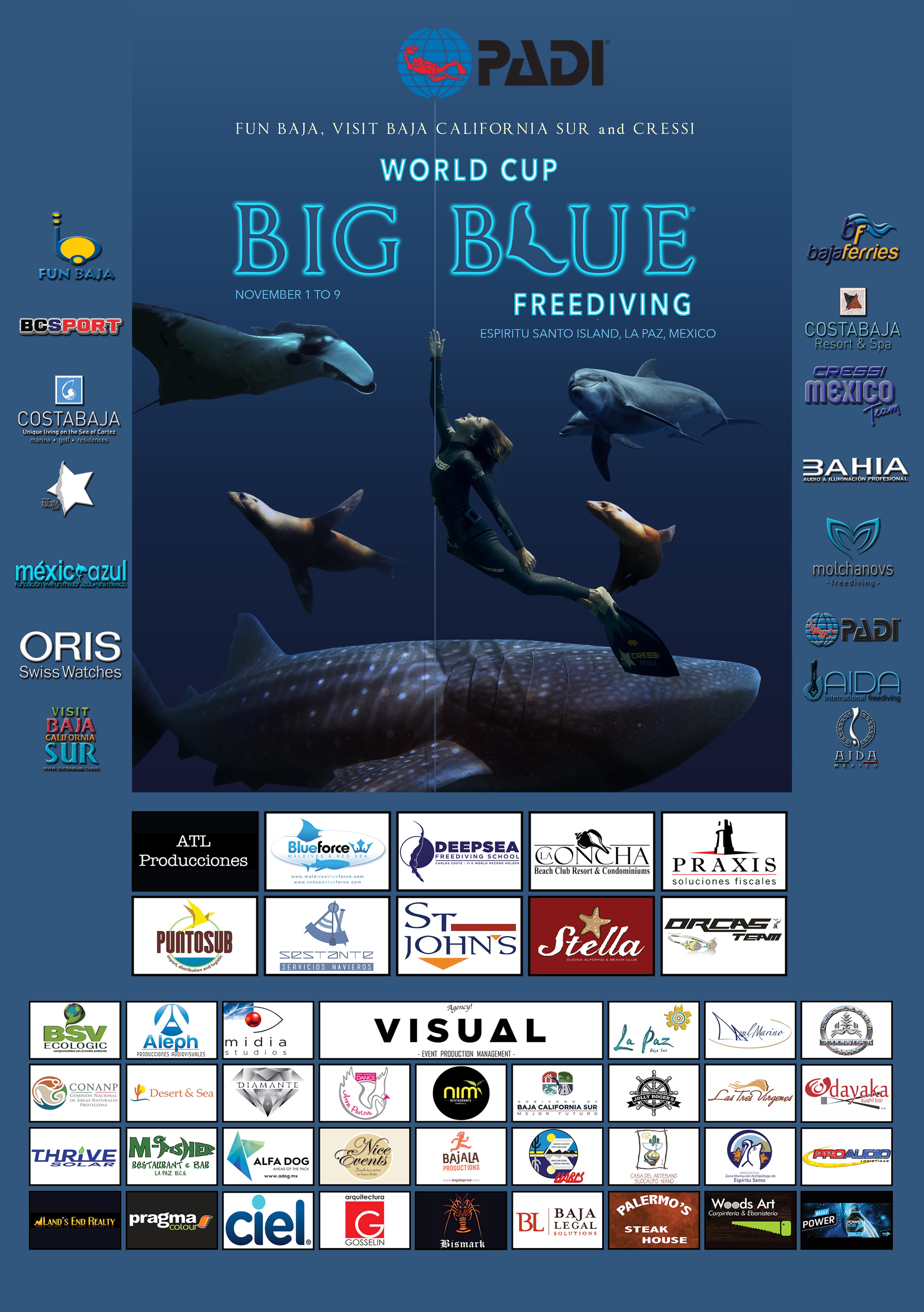 Big Blue Poster Final